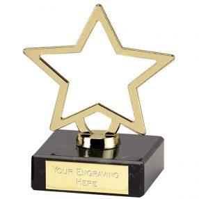 Stars Achievement Awards